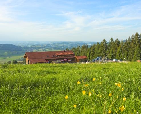 Sommer auf der Höfle-Alp
